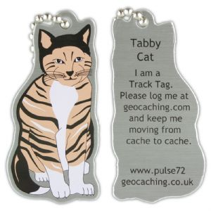 Tabby Cat Track Tag